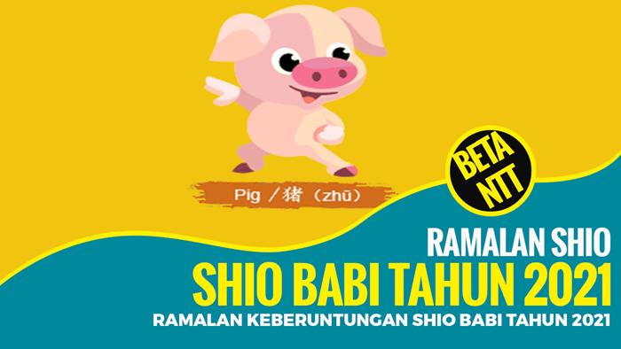 Ramalan Keberuntungan Shio Babi Tahun 2021