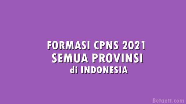 Formasi CPNS 2021 untuk PPPK Guru dan Non Guru Setiap Provinsi